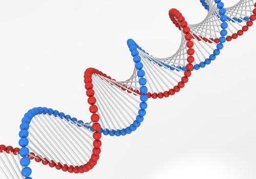 吃音は遺伝?家族の影響による2つの原因