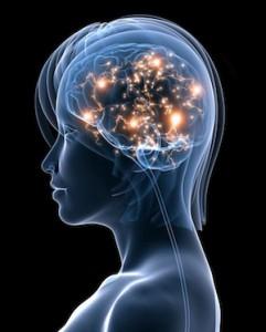 脳の回路を変える